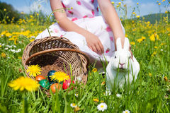 Child petting Easter bunny. Child petting the Easter bunny on a spring meadow, eggs in a basket and lots of flowers also to be seen. It is not entirely clear Stock Photo