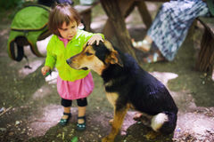 Child petting stray dog. Outdoors in park Stock Photo
