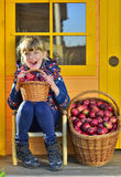 Child picking apples on a farm in autumn. Stock Photos