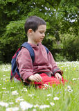 Child picking daisy flowers in spring Royalty Free Stock Image