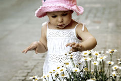 Child picking flowers stock photos