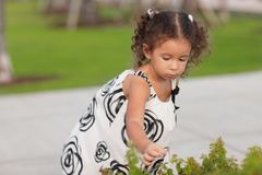 Child picking flowers Royalty Free Stock Photography