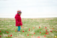 A child picking flowers Royalty Free Stock Photography