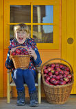 Child picking red apples in basket Stock Photos