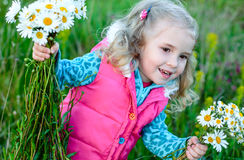 Child picking wild daisy flowers in field Royalty Free Stock Photography