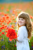 Child picking wild flowers in field. Kids play in a meadow and p Stock Photos