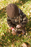 Child picking wild mushrooms Royalty Free Stock Image