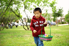 Child picks up eggs. A child is picking up Easter eggs Stock Photography