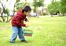Child picks up eggs Stock Images