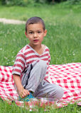 Child on picnic blanket. Child boy sitting on a picnic blanket in grass with a bowl of strawberries Stock Image