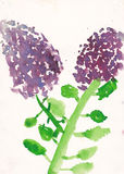 Child picture of syringa (lllac) watercolor illustration Stock Photography