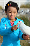 Child with pigeon Royalty Free Stock Photo