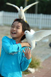 Child with pigeon royalty free stock image