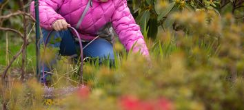 Child searching for Easter eggs. Child in a pink coat searching for eggs during easter egg hunt royalty free stock photos
