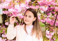 Child on pink flowers of sakura tree background. Girl enjoying cherry blossom or sakura. Cute child enjoy warm spring. Day. Aromatic blossom concept. Girl stock images