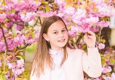 Child on pink flowers of sakura tree background. Girl enjoying cherry blossom or sakura. Cute child enjoy warm spring. Day. Aromatic blossom concept. Girl stock photo