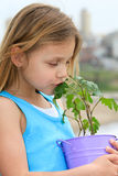 Child with a plant. Beautiful little girl holding a pot with  plant Stock Image