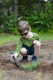 Child planting herbs Royalty Free Stock Photos