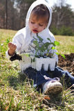 Child planting vegetables. In a garden Royalty Free Stock Photos