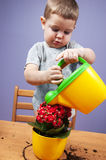 Child and plants Stock Photography