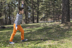 Child play in the forest Royalty Free Stock Photo