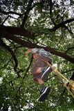Child play laugh swing. Boy child playing in garden on swing or rope ladder Royalty Free Stock Photos