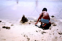 Child playing. At the beach stock image