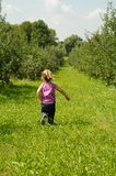 Child playing. Young girl running in an apple orchard Stock Photography