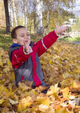 Child playing with autumn leaves Royalty Free Stock Photography