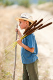 Child playing with bulrush Royalty Free Stock Photo