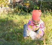 Child playing with a cat in the grass royalty free stock image