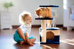 Child playing with cat at home. Kids and pets stock photo