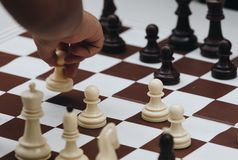 child playing with chess. stock photos