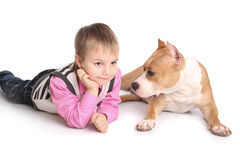 Child playing with the dog Stock Photos