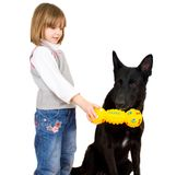 Child playing with dog Royalty Free Stock Photography