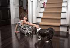 Child playing with a dog inside the house. Little girl inside the house playing with a dog on the dark brown hardwood floor Stock Image