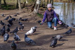 Child playing with doves in the city street. young girl feeding pigeons. Girl playing and feeding doves in the city street royalty free stock photos
