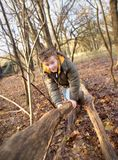 Child playing in Forest. Boy (7) in a forest balancing on a fallen tree Stock Photos