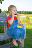 Child playing harmonica. Royalty Free Stock Photography