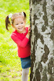 Child playing hide and seek outdoors in park. Beautiful little girl hiding behind huge tree on summer or spring sunny day. Small kid standing near tree at Royalty Free Stock Photography