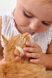 Child playing with a kitten Royalty Free Stock Images