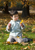 Child playing with leaves Royalty Free Stock Photos