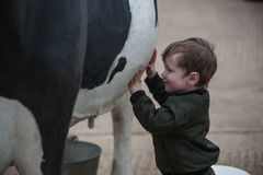 Child playing with life size cow. Child playing with life size replica cow stock images
