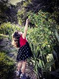 Child nature. Child playing in nature Royalty Free Stock Photography