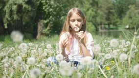 Child Playing in Park, Kid Blowing Dandelion Flowers on Meadow, Girl in Nature royalty free stock photos