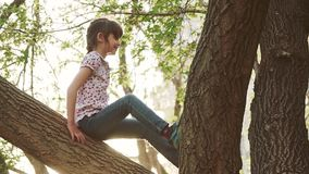 Child is playing in the park in the summer. Little girl is sitting on a tree branch. Adventure of a children. Happy stock footage