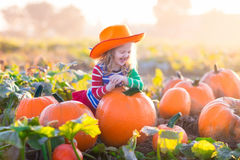 Child playing on pumpkin patch Royalty Free Stock Images