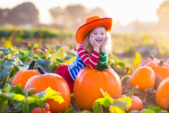 Child playing on pumpkin patch. Little girl picking pumpkins on Halloween pumpkin patch. Child playing in field of squash. Kids pick ripe vegetables on a farm in Royalty Free Stock Image