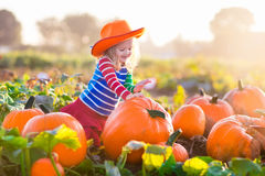 Child playing on pumpkin patch Stock Images