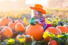 Child playing on pumpkin patch Stock Photography